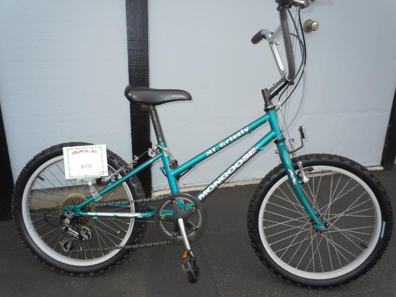 Mongoose Mt Grizzly, boys, girls, 5 speed bike