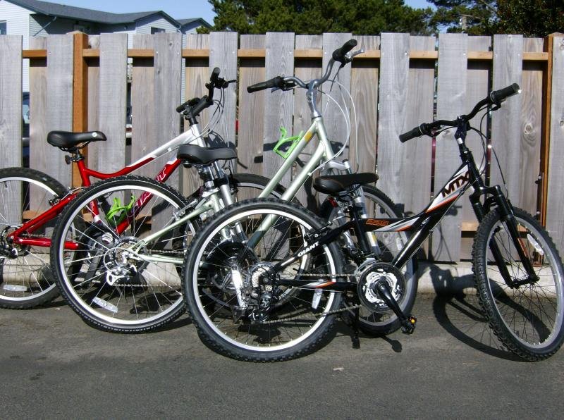 Mountain bikes and comfort cruisers